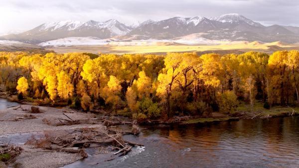 Velkolepý Yellowstone
