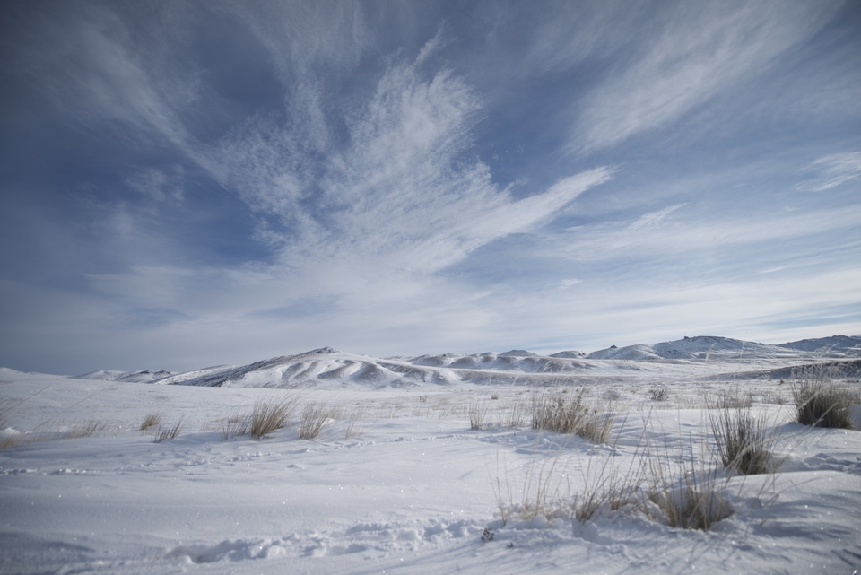 Dokument Do divočiny: Mongolsko