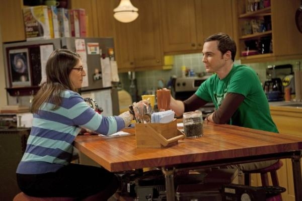 The Big Bang Theory  IV (20)