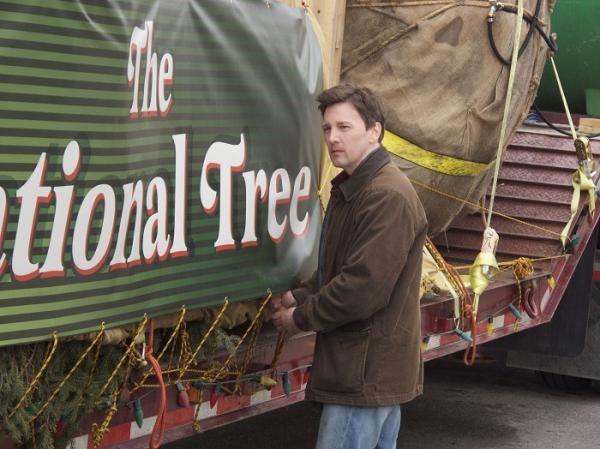 Film Národní vánoční strom