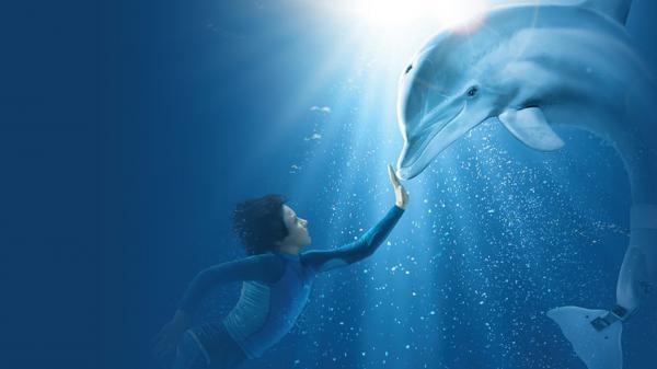 obrázek k pořadu Můj přítel delfín