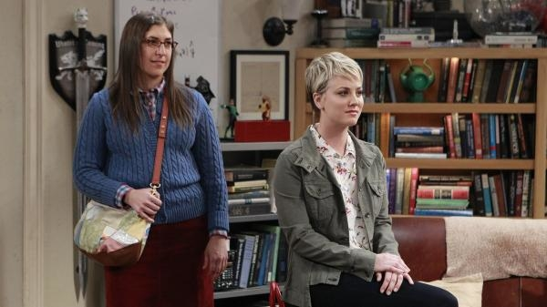 The Big Bang Theory  VIII (12)