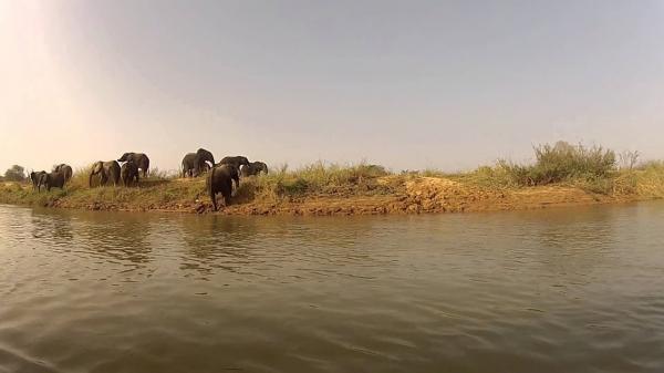 Národní park v Nigeru