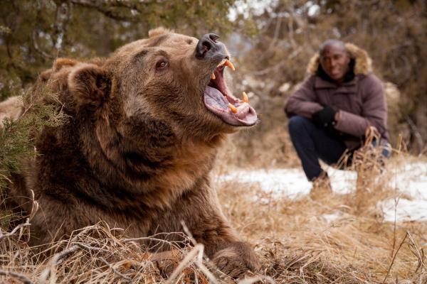 Velká zvířata: Poslední obři