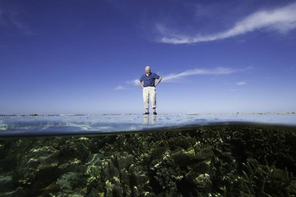 David Attenborough: Velký bariérový útes