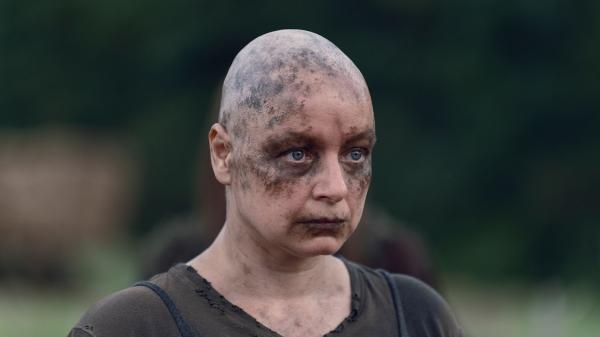 Walking Dead  IX (11)