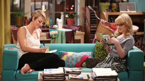 The Big Bang Theory  VIII (2)