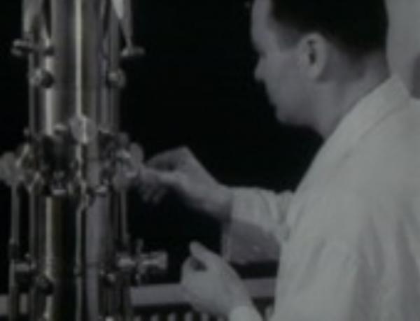 Dokument Člověk a záření