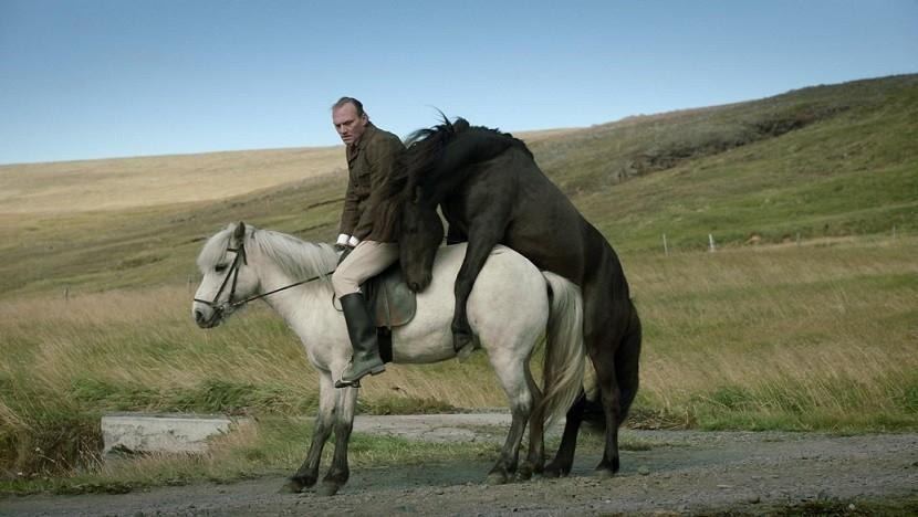 Film O koních a lidech