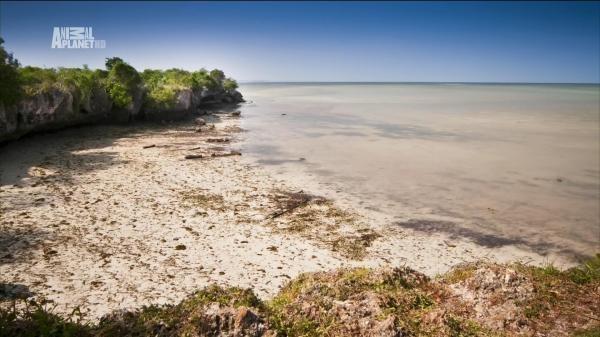 Nejdivočejší ostrovy
