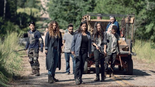 Walking Dead  IX (13)