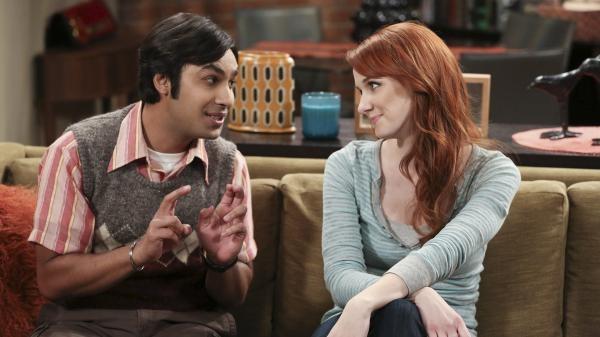 The Big Bang Theory  VIII (17)