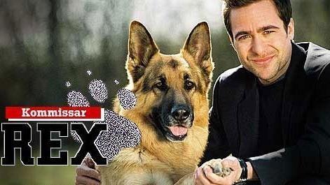 Rex felügyelő I.  (11)