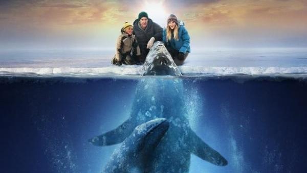 obrázek k pořadu Máme rádi velryby