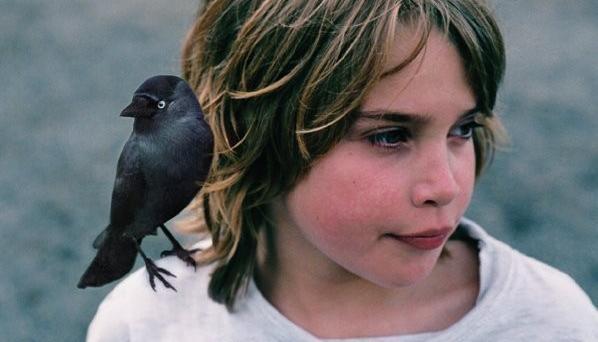 obrázek k pořadu Ptáče