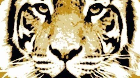 Dokument Elefant, Tiger & Co.