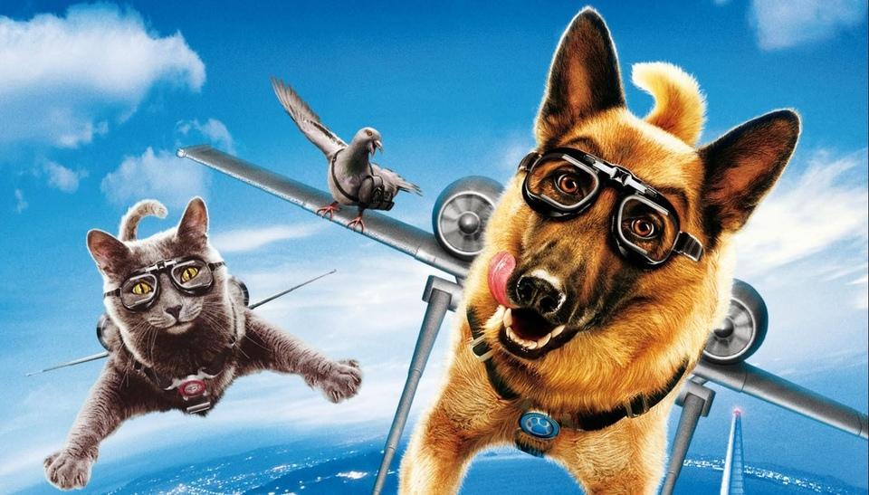Film Jako kočky a psi: Pomsta prohnané Kitty