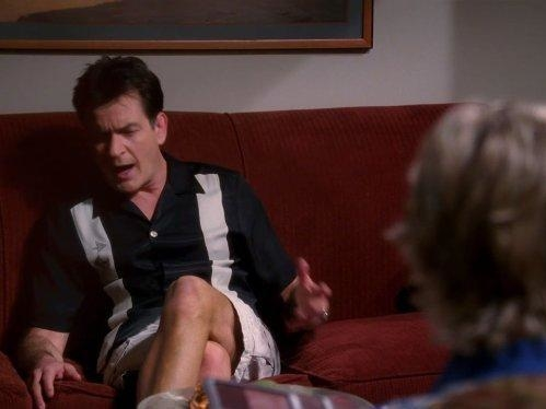 Two and a Half Men  VIII (12)