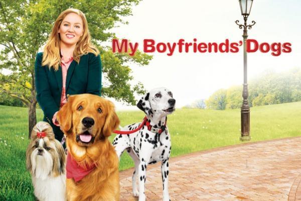 Vztah pro psa