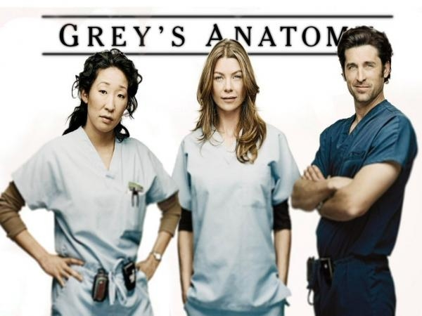 Grey's Anatomy  XIV (24)