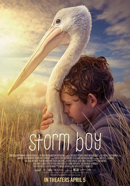 Film Chlapec a pelikán