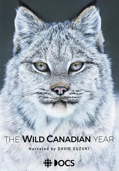 Kanada: Rok v divočině