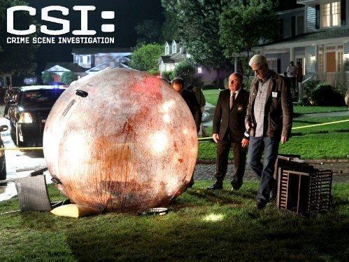 CSI: Kryminalne zagadki Las Vegas  XIV (8)