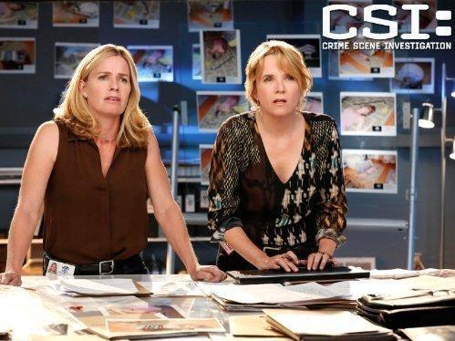 CSI: Kryminalne zagadki Las Vegas  XIV (7)
