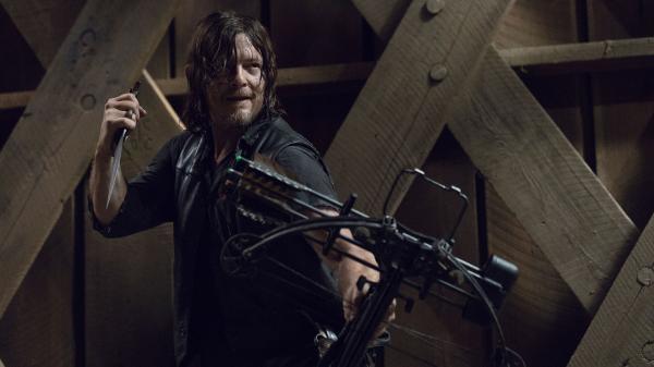 Walking Dead  IX (9)
