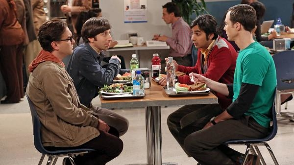 The Big Bang Theory  VIII (5)