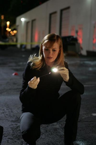 CSI: Kryminalne zagadki Las Vegas  V (24)