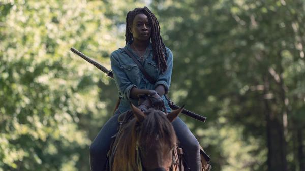 Walking Dead  IX (7)