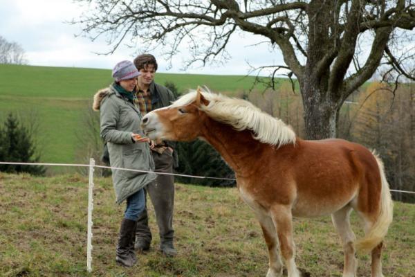 Film Rosamunde Pilcher: Nečekaná láska