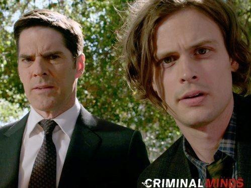 Myšlenky zločince  VIII (10)