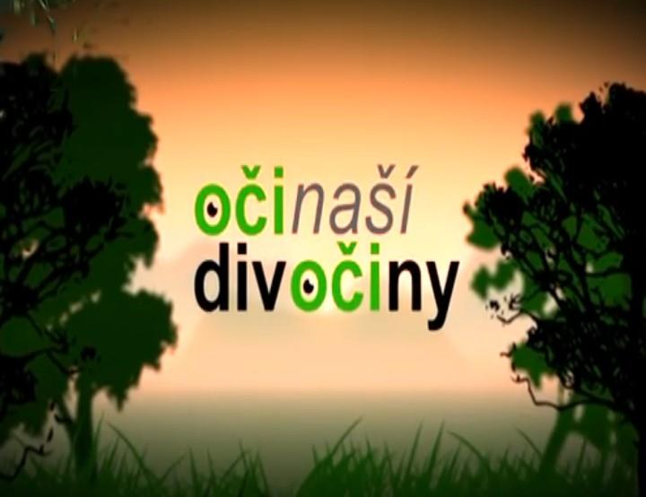 Documentary Oči naší divočiny