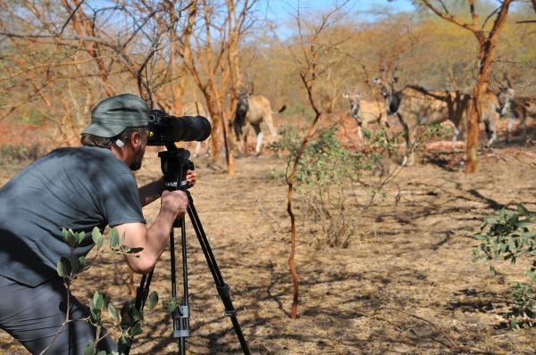 Dokument Češi zachraňují... antilopy v Senegalu