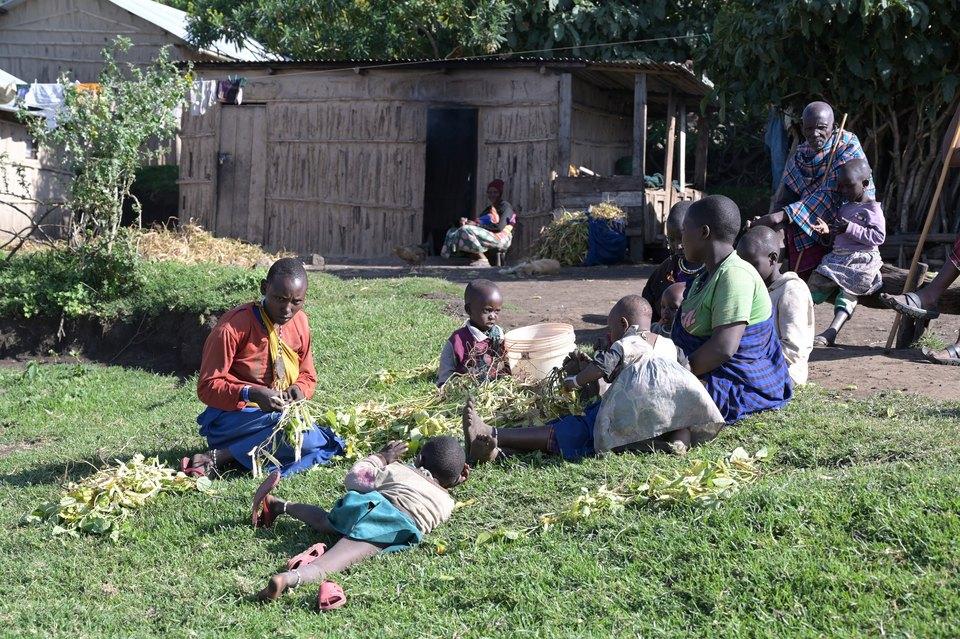 Dokument Na cestě po severní Tanzánii