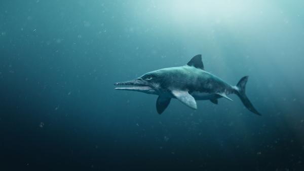 Dokument David Attenborough a mořský drak