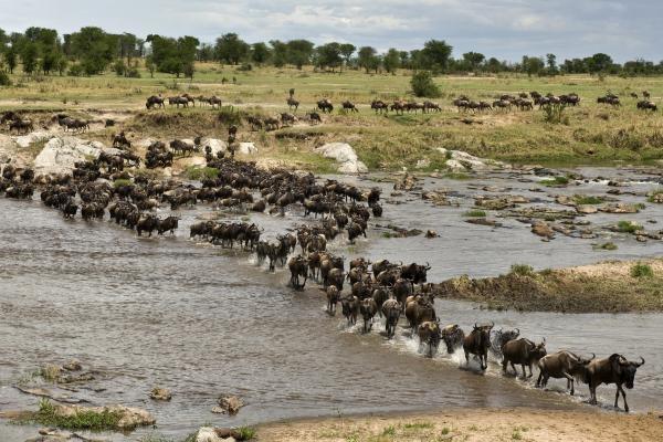 Nomádi ze Serengeti