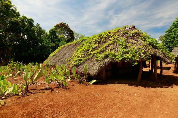 Dokument Útěk na Vanuatu