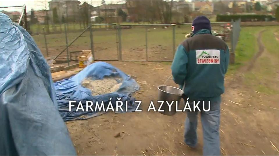 Dokument Farmáři z azyláku