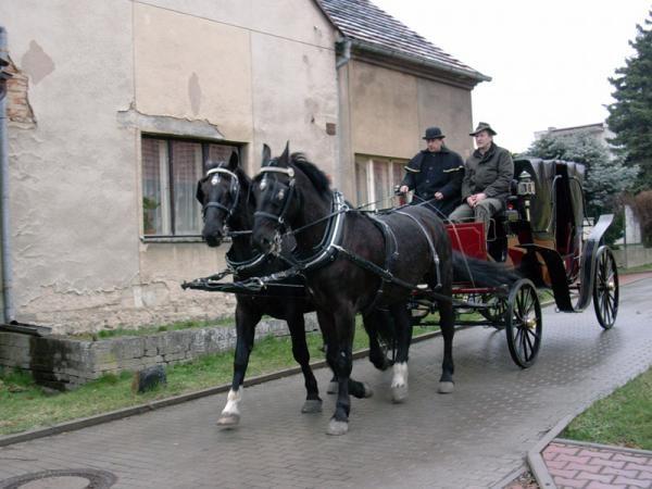 Dokument Muzeum koňských postrojů a kočárových lamp