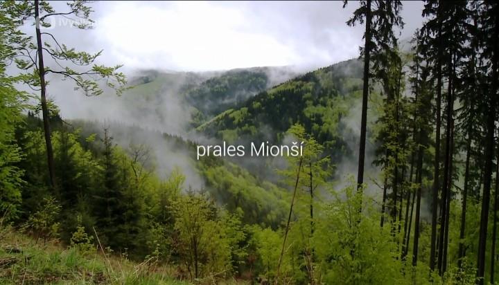 Dokument Prales Mionší