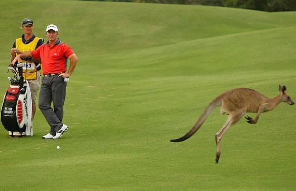 Australian PGA Championship 2018
