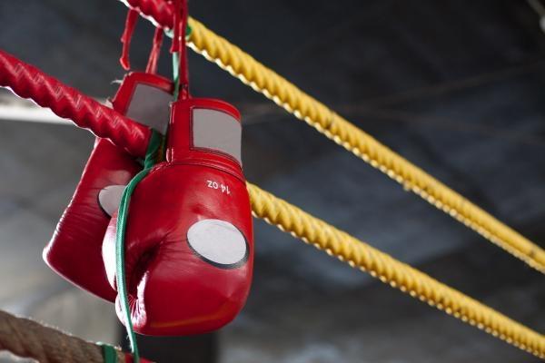 Box: Galavečer profesionálního boxu - Boxing Live