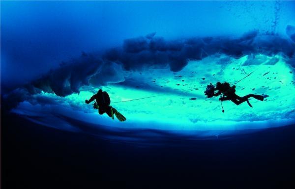 Pod ledovou hladinou