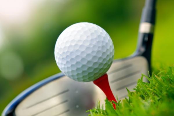 Golfista roku 2019