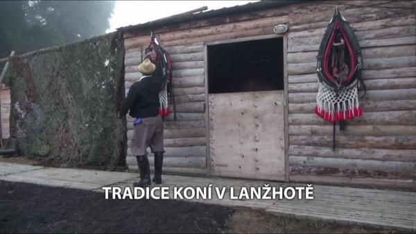 Tradice koní v Lanžhotě