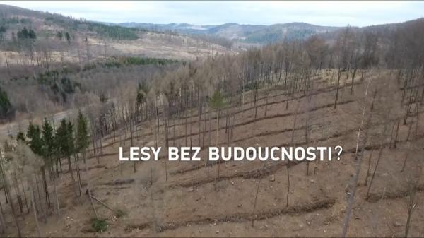 Lesy bez budoucnosti?