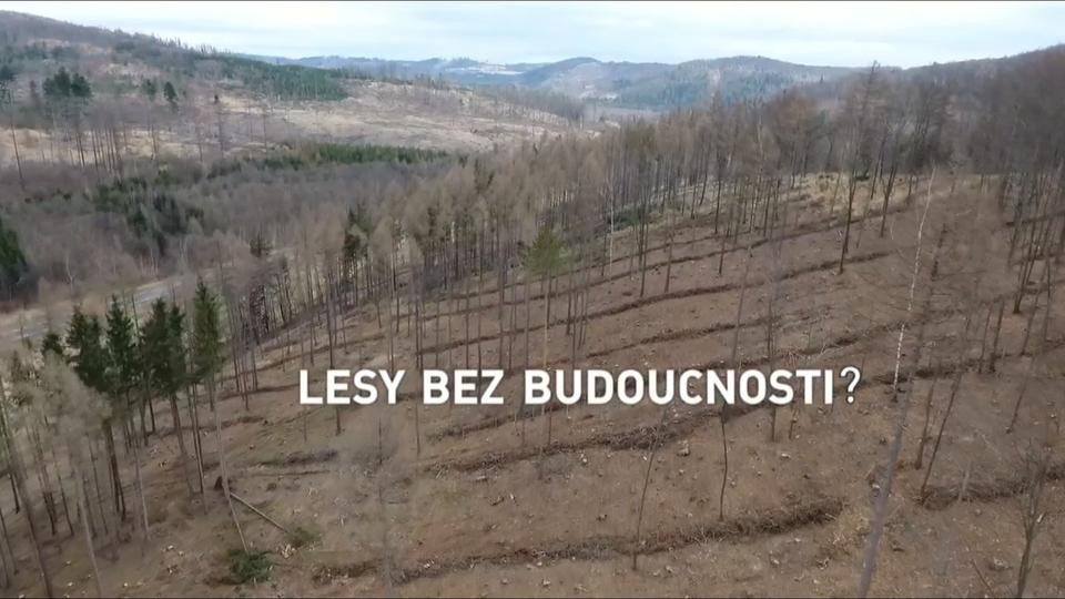 Dokument Lesy bez budoucnosti?
